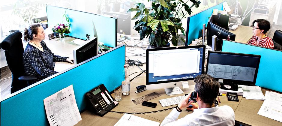 Mehrerer Mitarbeiter arbeiten am Computer